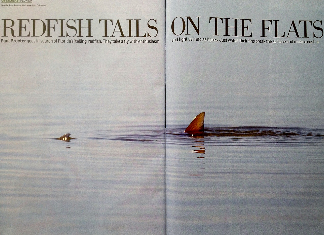 Miami Fly Fishing Paul Proctor Article Trout Fisherman