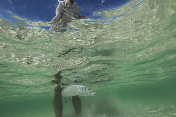 Miami Fly Fishing Guide: Capt. Dave Hunt with biscayne bay bonefish