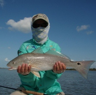 Miami Fly Fishing Photo: Jerry Noble redfish on fly